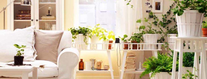 Come sistemare la casa dopo un affitto lungo o breve for Come sistemare la casa